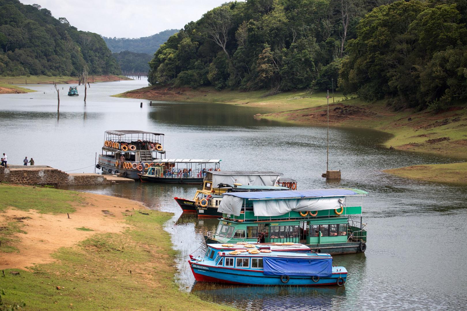 Rivière Periyar et ses ramifications au sud de Kumely