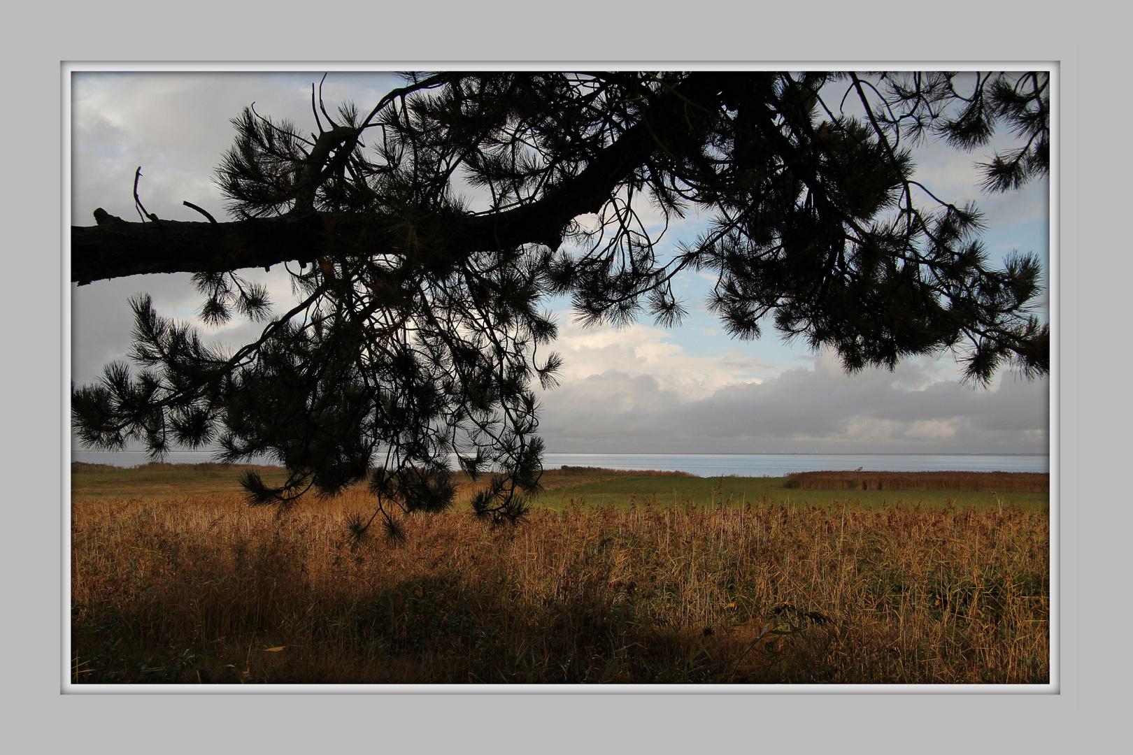 Rømø im Oktober