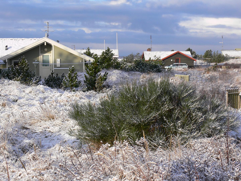 Rømø im Winter 2