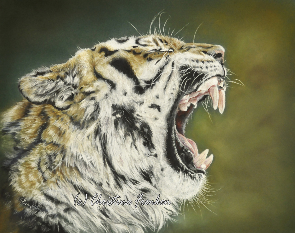 Roaaar... * Tiger Portrait