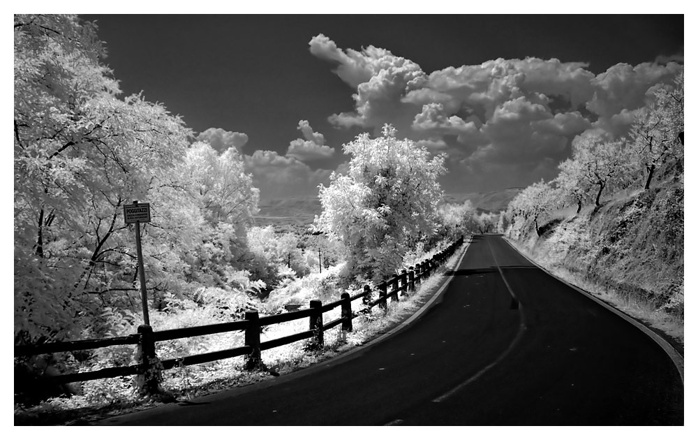 road to nowhere_IR
