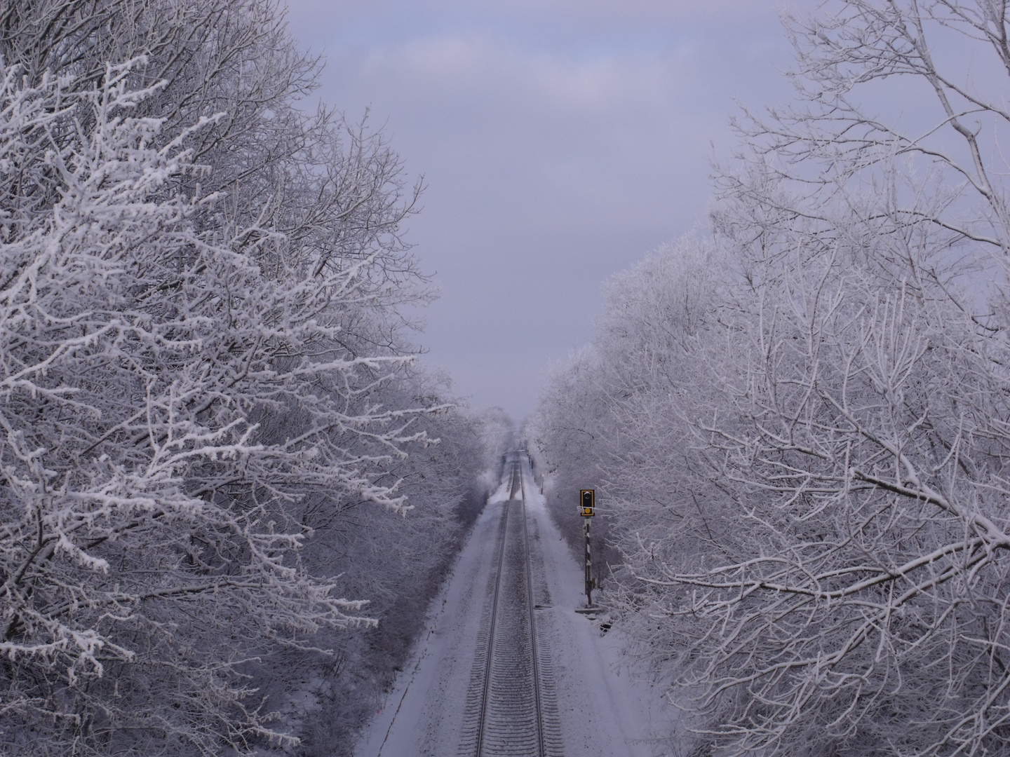 road to snow world