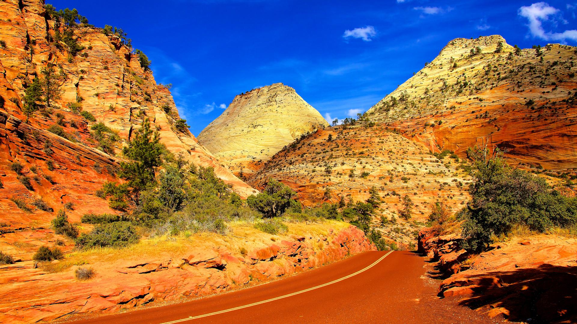 Roadscene at Zion