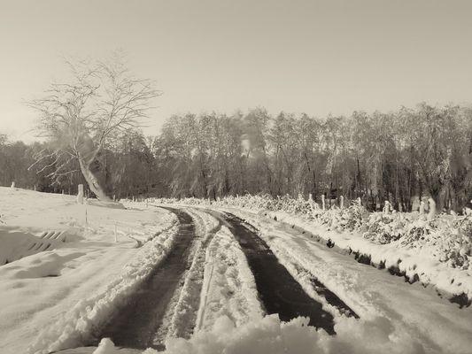 Roaillan sous la neige