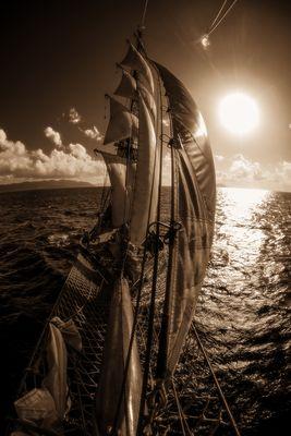 Roald Amundsen unter Vollsegel