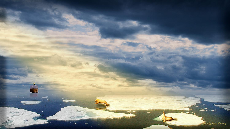 Robbe im letzten Sonnenschein