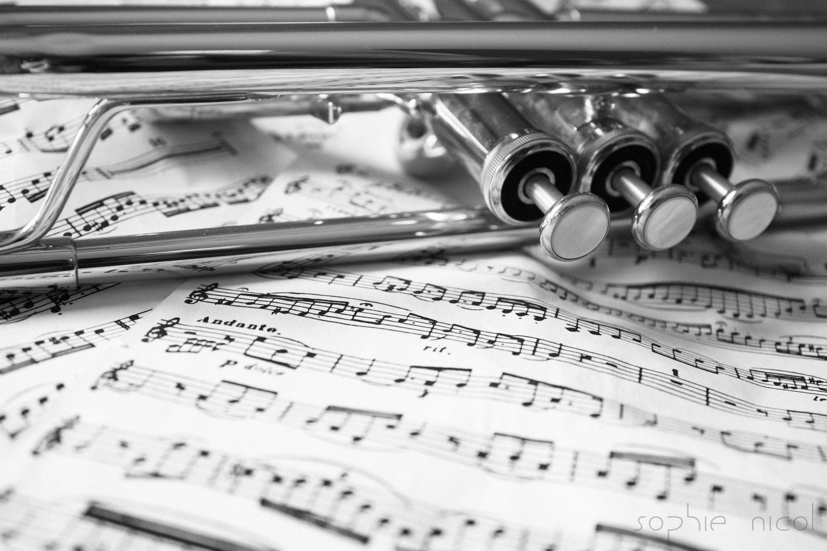 Robin Adair on Trumpet