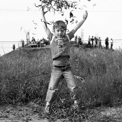 Robin springt