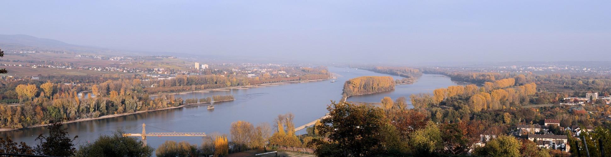 Rochusberg in Richtung Mainz