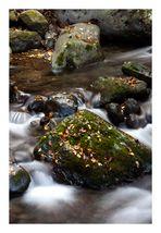 Rock in river