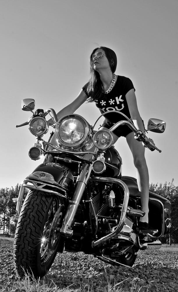 Rock 'n' Harley!