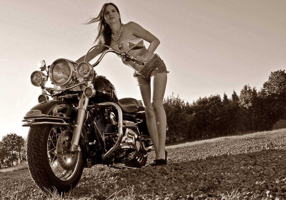 Rock 'n' Harley II