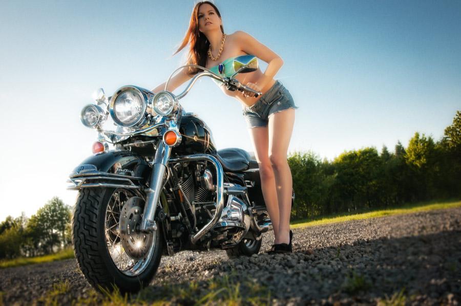 Rock 'n' Harley III