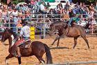 Rodeo, Bareback/Saddle Bronc Riding