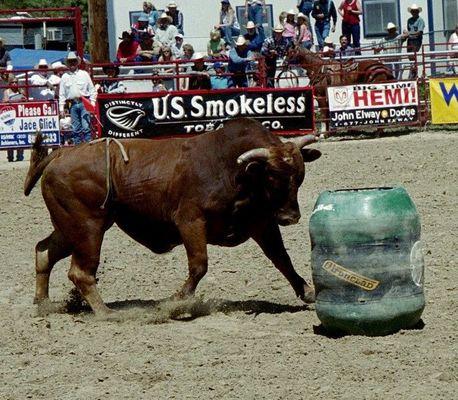 Rodeo in Denver Colorado