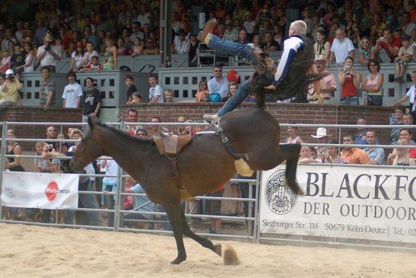 Rodeo in Köln #2