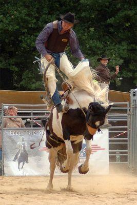 Rodeo in Köln
