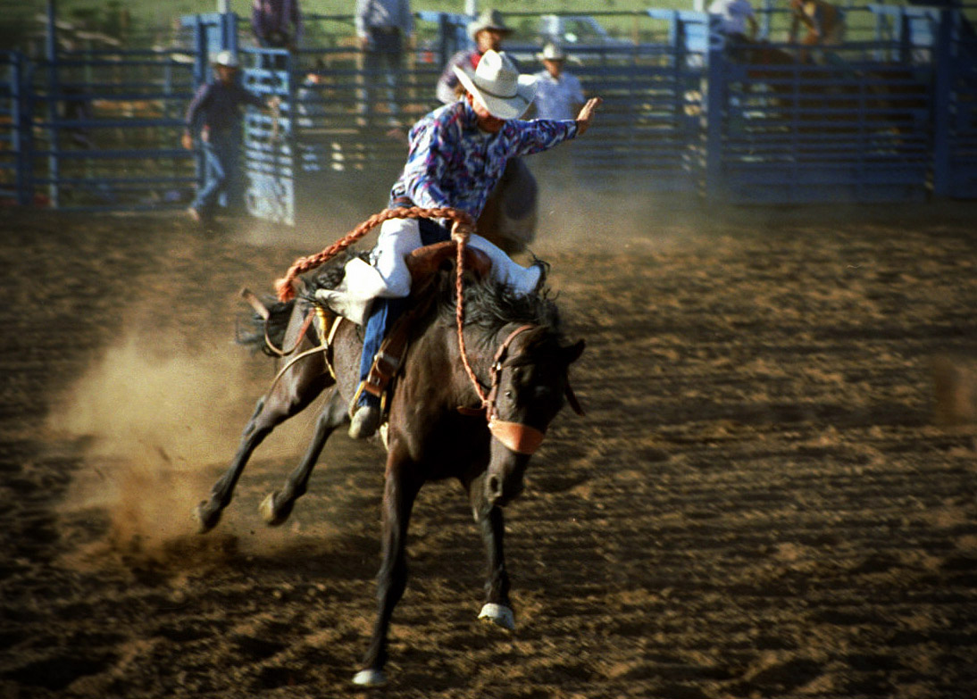 Rodeo in Zion
