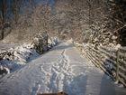 Röhlinghausen im Schnee 2