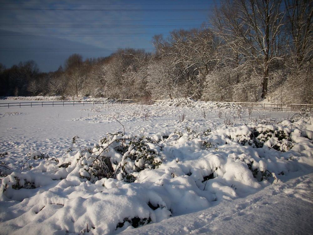 Röhlinghausen im Schnee 3