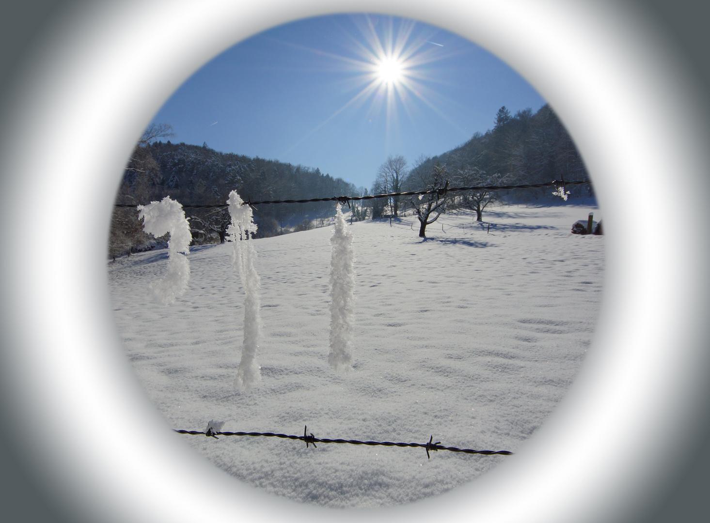 Röhrenblick in den Winter