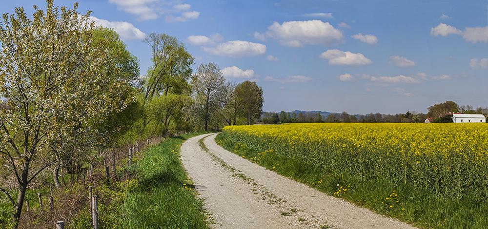 Römerradweg