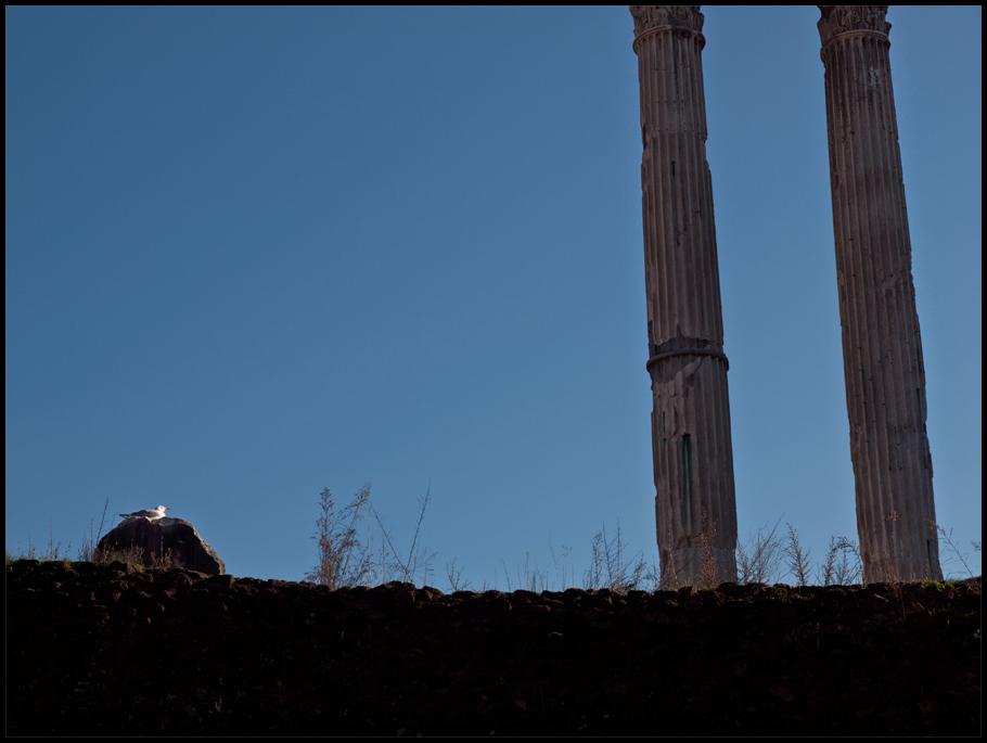 Römische Säulen.