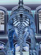 Röntgen eines Dinosauriers