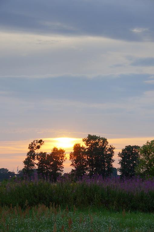 Rohrbeck, 02.08.10 – 03