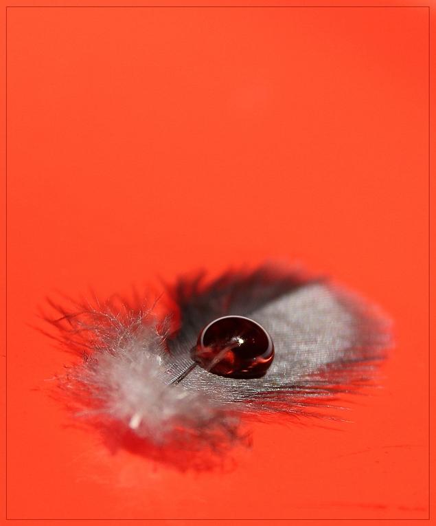 rojo super rojo