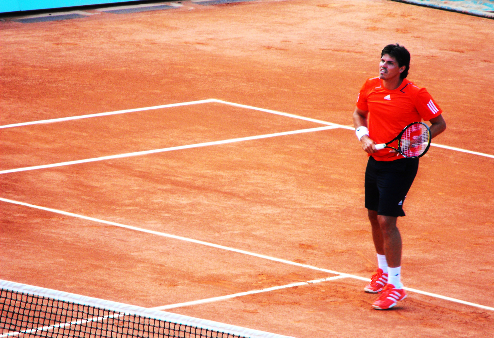 Roland Garros 2010...