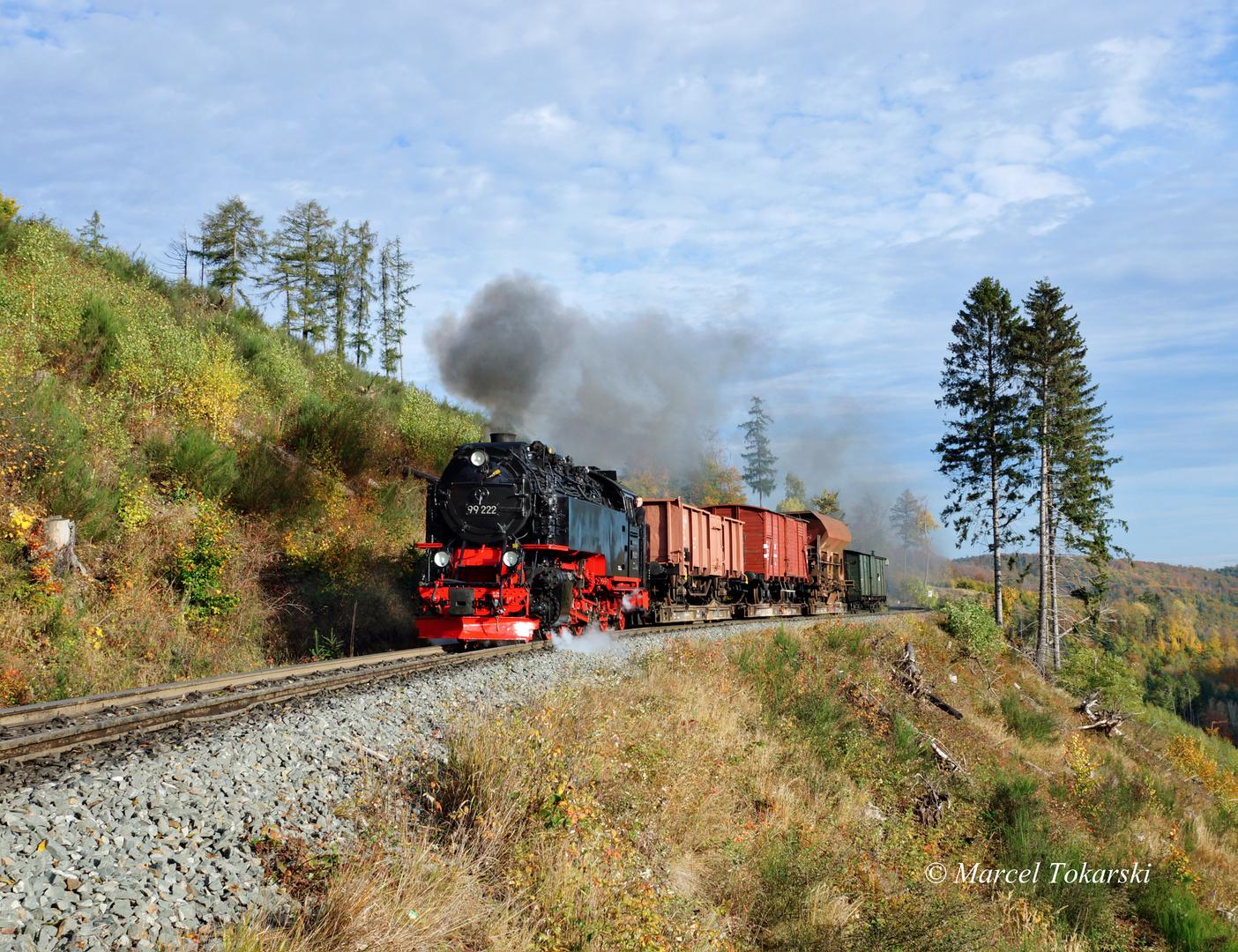 Rollwagenverkehr im Harz erleben,...