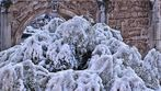 """Roma: """"La neve sui bassorilievi"""""""