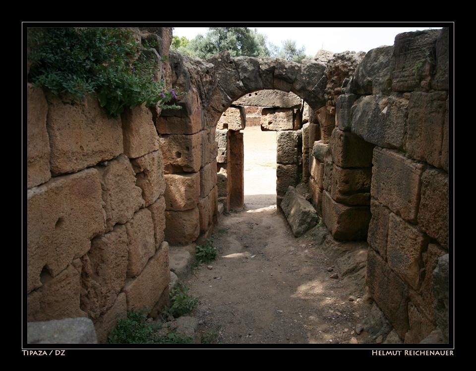 Roman Ruins at Tipaza II, Tipaza / DZ