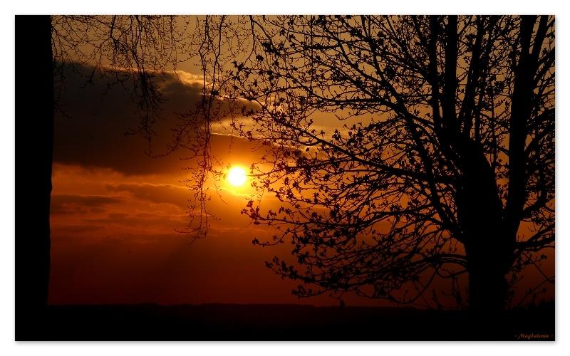 Romance solaire