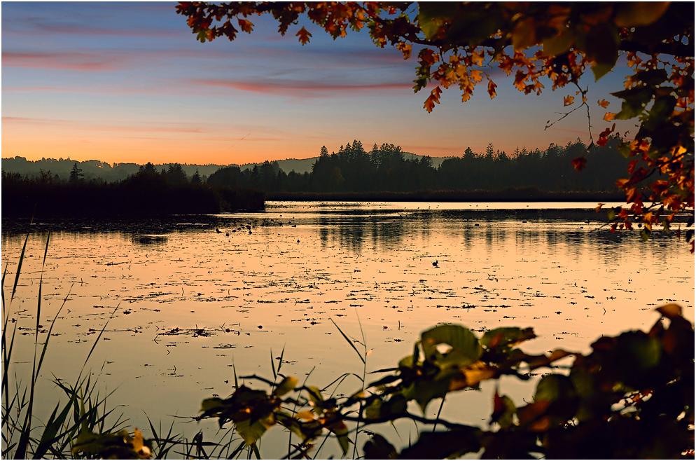 Romantic Autumn Scene