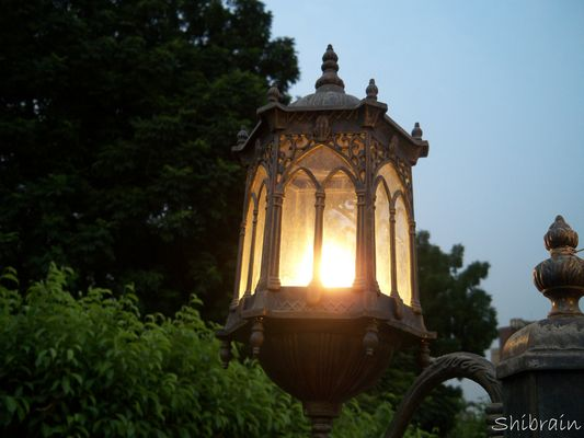 Romantic Light