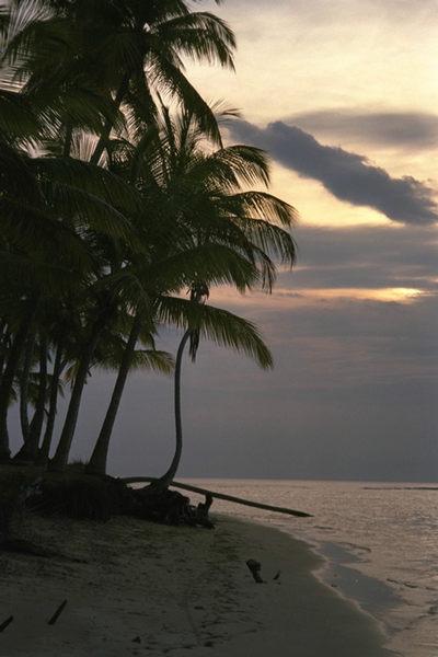 Romantik pur in Cayo Levantado