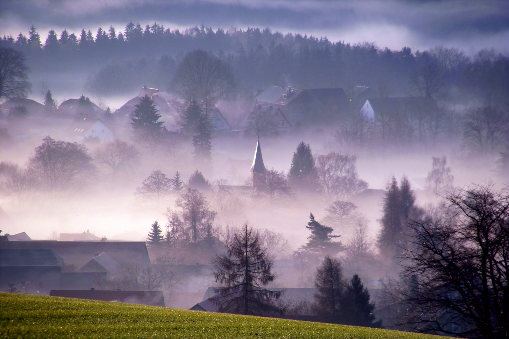 Romantische Nebelwelt am Nationalpark