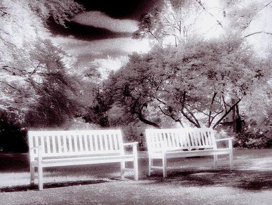 Romantische Parkbank