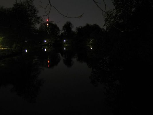 Romberg Park bei Nacht