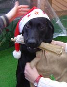 Ronnie übt den Weihnachtsmann