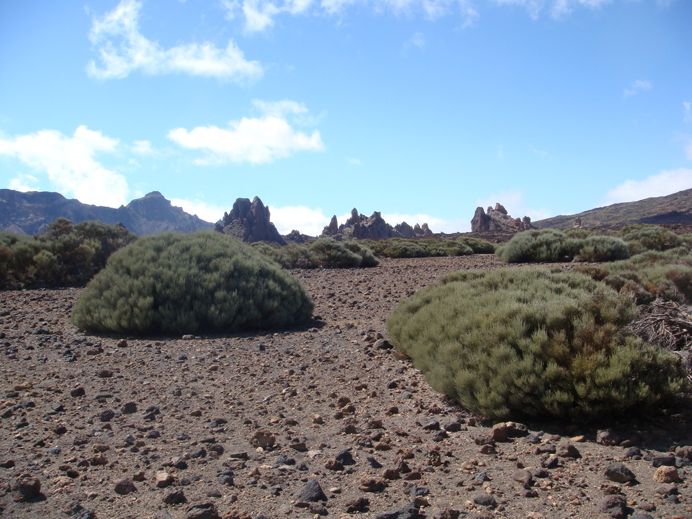 Roques de García (Teide-Nationalpark, Teneriffa)