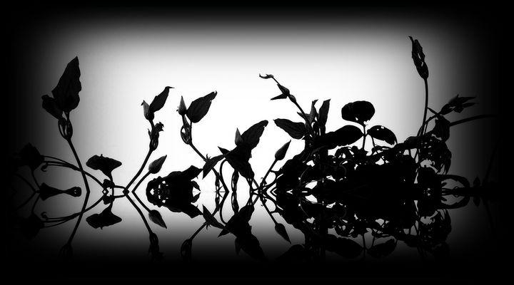 Rorschach-Blumen