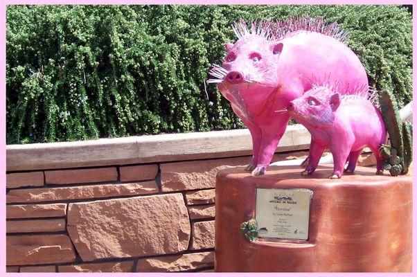 Rosa Borstenschweine