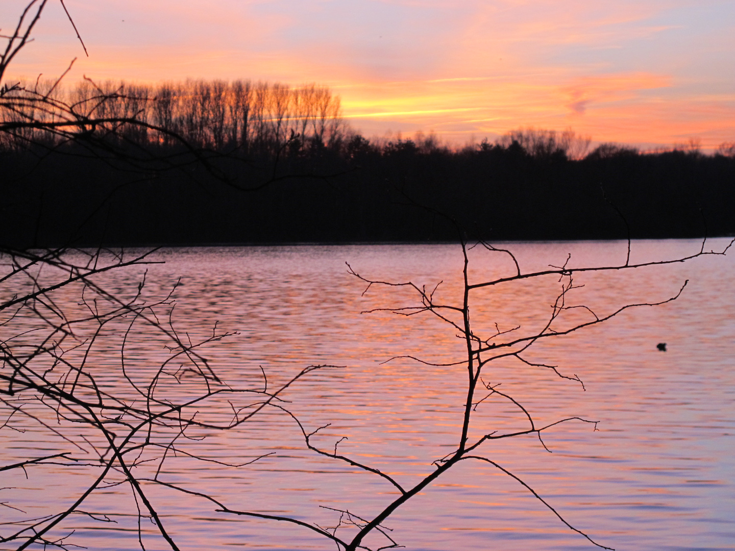 """""""Rosa"""" Stunde am See"""