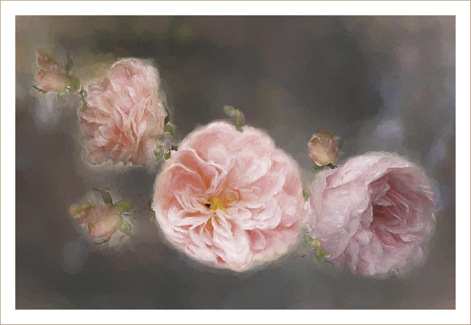 Rosas en atelier