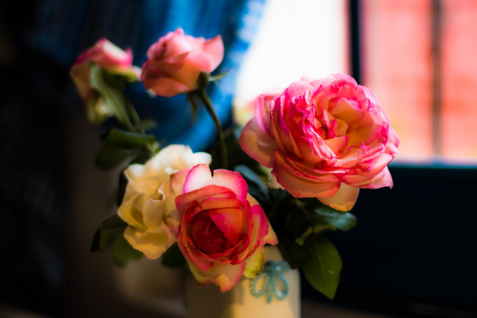 Rosas en la cocina II