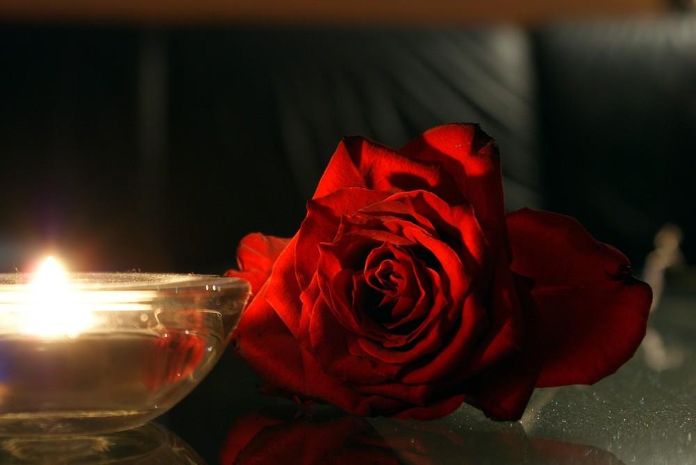 ...rose...