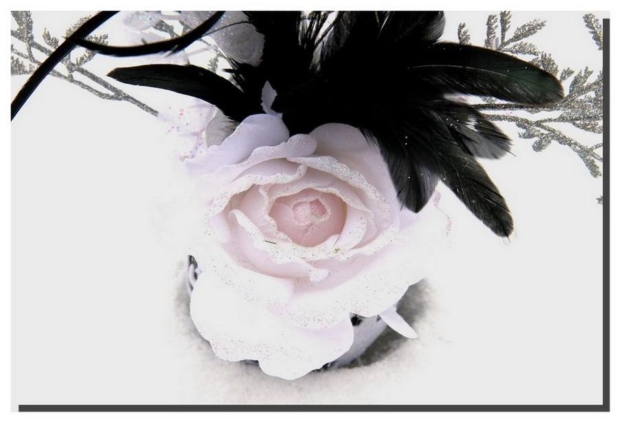 rose au manteau de neige